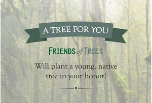 gift_tree