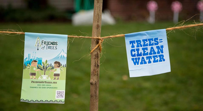 trees_clean_water